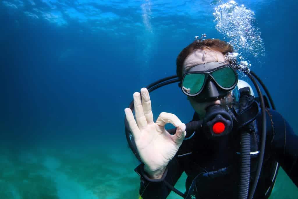 ReefBox Diver