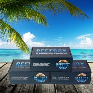 3 Month Subscription Box for Scuba Divers