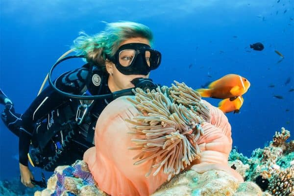 Diving Excursion Package 3