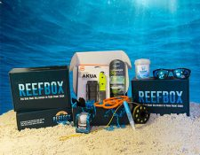 box-set-underwater