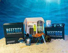 Example Reef Box
